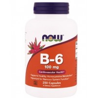 B-6 100 мг (250капс)
